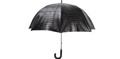 Unbelievably expensive Umbrella